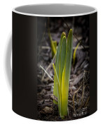 Sign Of Spring 2 Coffee Mug