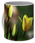 Signs Of Spring II Coffee Mug