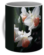 Signs Of Spring Coffee Mug