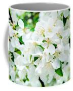 Signs That Spring Has Sprung Coffee Mug