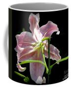 Silent Peaceful Beauty Coffee Mug