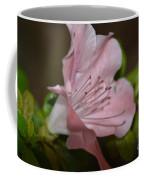 Silent Pink Photo B Coffee Mug