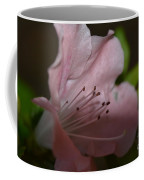 Silent Pink Photo D Coffee Mug