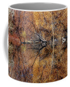 Silent Reflections Coffee Mug