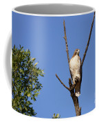 Silent Watch Coffee Mug