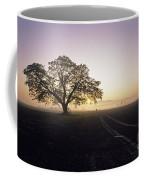 Silhouetted Tree In Field Sunrise Coffee Mug