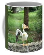 Silly Bird Coffee Mug