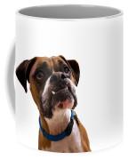 Silly Boxer Dog Coffee Mug