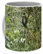 Silly Red-tailed Monkey Coffee Mug