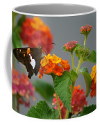 Silver-spotted Skipper Butterfly On Lantana Blossoms Coffee Mug