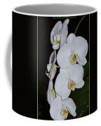 Silver Trio  Coffee Mug