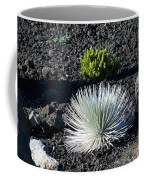 Silversword Plant Coffee Mug