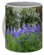 Silvery Lupine Black Canyon Colorado Coffee Mug