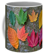 Similar But Different Coffee Mug by Frozen in Time Fine Art Photography