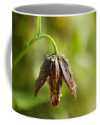Simple Miracles Coffee Mug