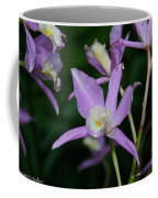 Simple Purple Coffee Mug