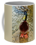 Simply Ducky Coffee Mug