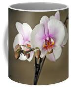 Simply Elegant Coffee Mug