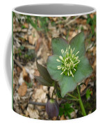Simply Green Coffee Mug