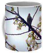 Singing Of Spring Coffee Mug