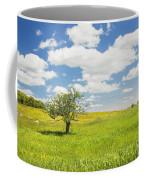 Single Apple Tree In Maine Blueberry Field Coffee Mug