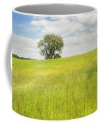 Single Apple Tree In Maine Hay Field Coffee Mug