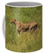 Single Cheetah Running Through The Grass Coffee Mug