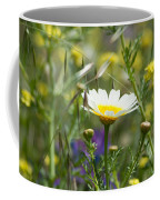 Single Daisy In A Field Coffee Mug