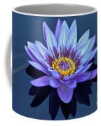 Single Lavender Water Lily Coffee Mug