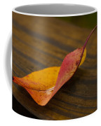 Single Leaf Coffee Mug