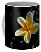 Single Plumeria Coffee Mug