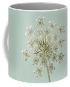 Single Queen Anne's Lace Coffee Mug