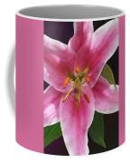 Single Stargazer Lily Coffee Mug
