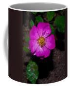 Single Wild Rose Coffee Mug