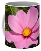 Singular Pink Cosmos Coffee Mug