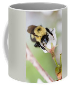 Sipping Nectar Coffee Mug