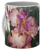 Sirina Coffee Mug