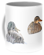 Sitting Ducks In A Blizzard Coffee Mug