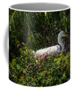 Sitting On The Nest Coffee Mug