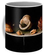 Six Shells On A Stone Shelf Coffee Mug