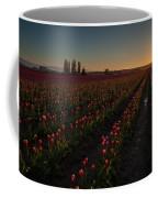 Skagit Dusk Tulip Fields Coffee Mug