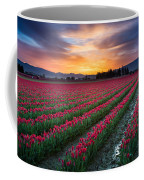 Skagit Valley Predawn Coffee Mug