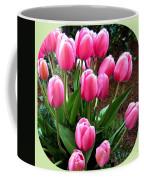 Skagit Valley Tulips 9 Coffee Mug