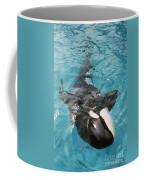 Skana Orca Vancouver Aquarium Pat Hathaway Photo1974 Coffee Mug