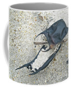 Skate Egg Cases On Sand Coffee Mug