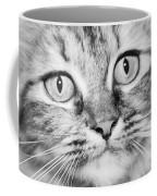 Skc 1498 Wide Eyed Coffee Mug