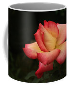 Skc 0432 Blooming And Blossoming Coffee Mug