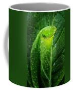 Skunk Cabbage Coffee Mug