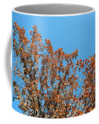 Sky Fall Coffee Mug