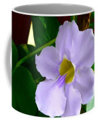 Sky Flower Or Clock Vine Coffee Mug